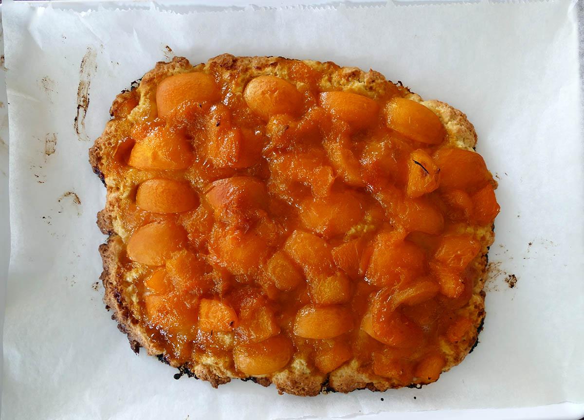 aprikosenkuchen-6