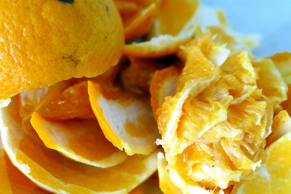 avocado-orangen-salat-2