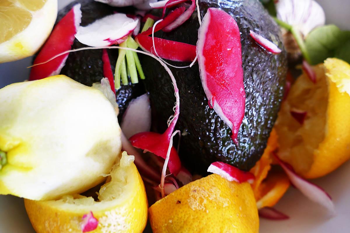 avocado-orangen-salat-5