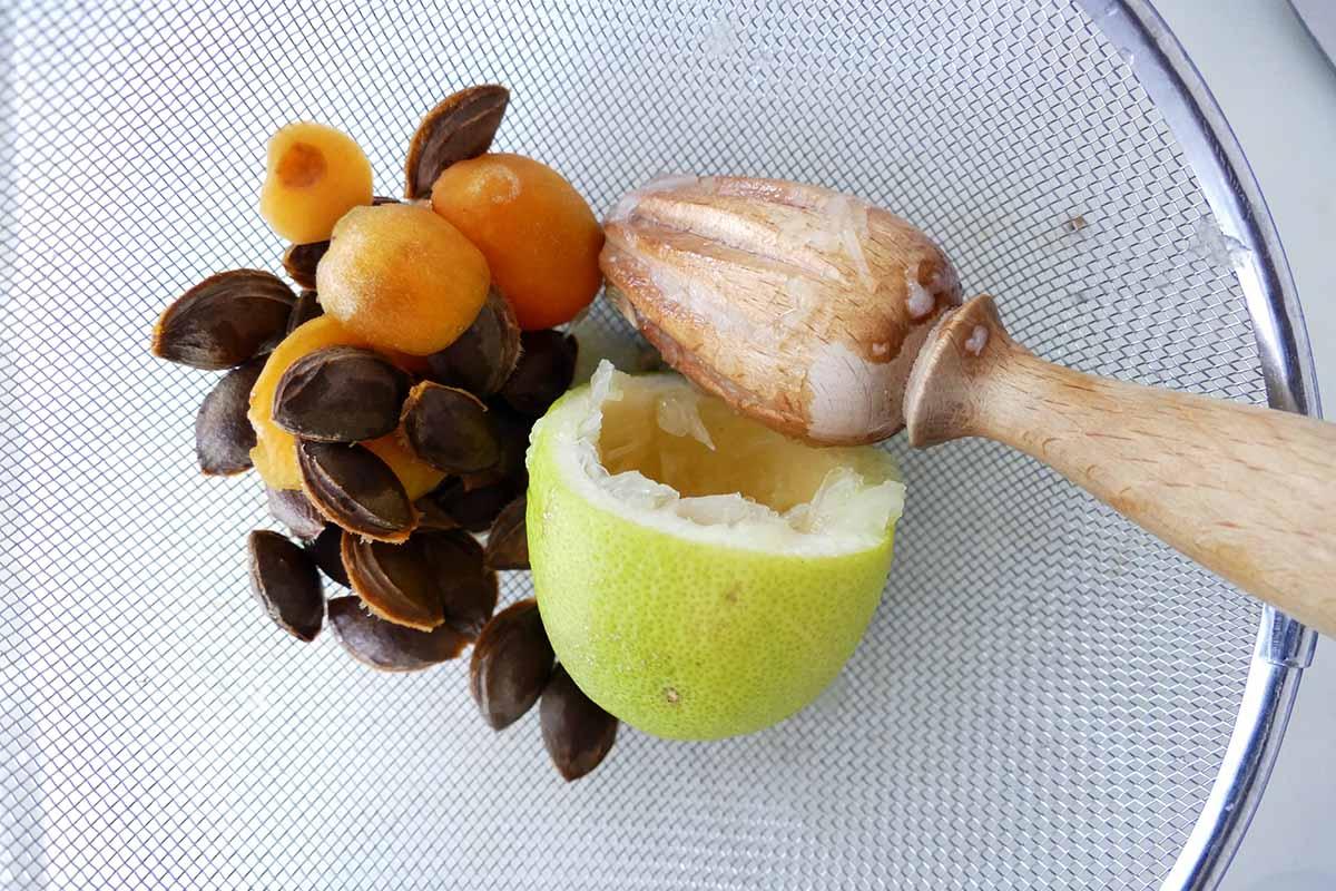 aprikosenkuchen-2-7