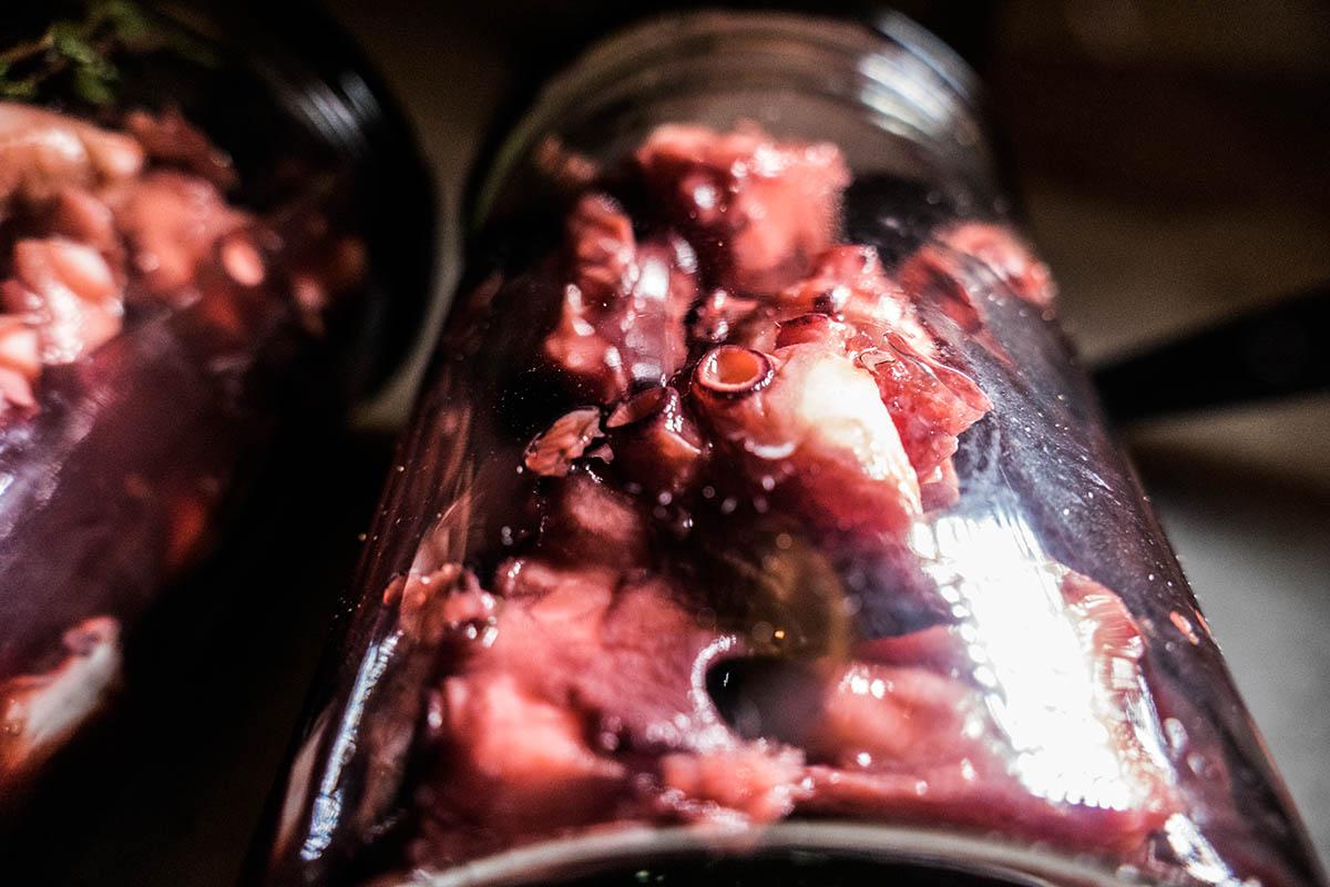 der Blick ins Glas, wie ihn auch der Pathologe sieht - pulpo